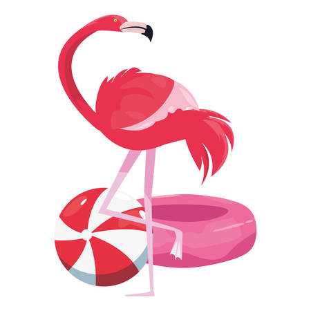 summer time holiday flamingo ball and float vector illustration