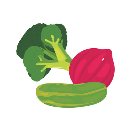 broccoli red onion cucumber fresh food vector illustration