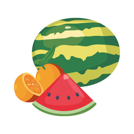 orange watermelon whole and slice fresh food vector illustration design
