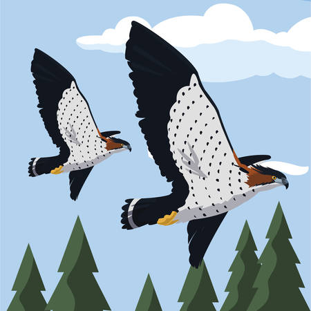 beautiful hawks flying majestic birds vector illustration design Çizim