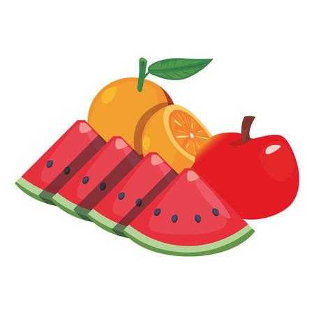 orange watermelon apple fresh food vector illustration Illusztráció