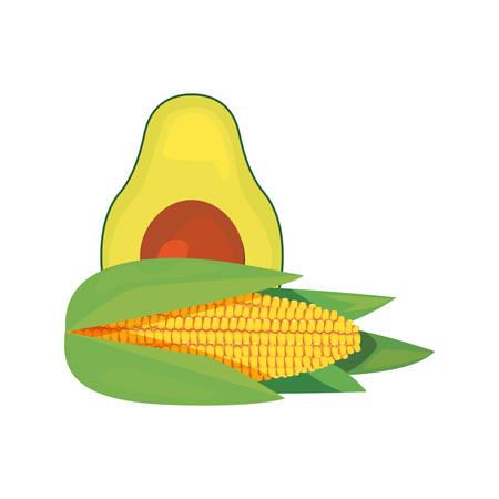 avocado corn fresh food vector illustration design