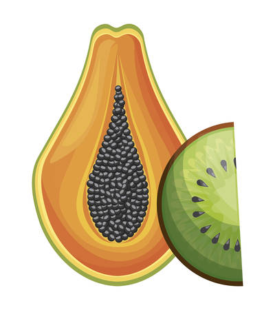 fresh half of papaya and kiwi fruits healthy vector illustration design