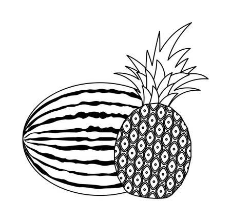 fresh healthy watermelon with pineapple fruits vector illustration design
