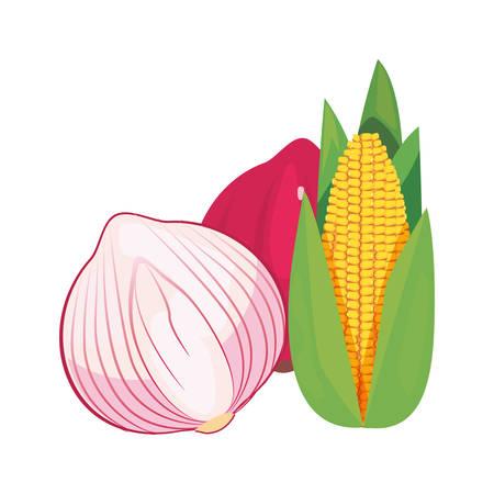 garlic red onion corn fresh food vector illustration