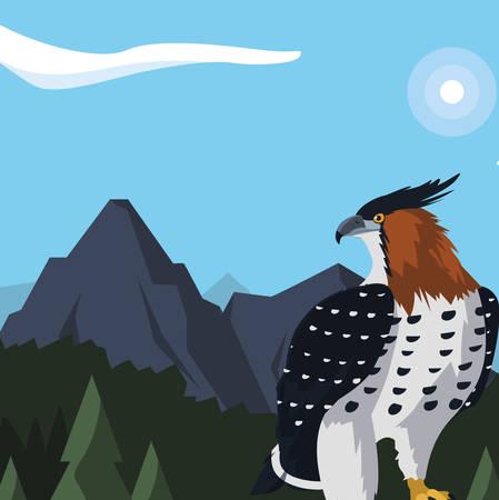 beautiful hawk majestic bird in the landscape illustration design