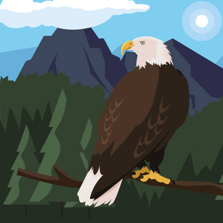 beautiful bald eagle in tree branch landscape scene vector illustration design