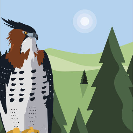 beautiful hawk majestic bird in the landscape illustration design Фото со стока - 132104303