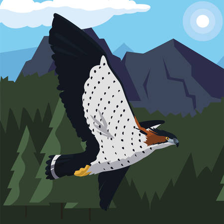 beautiful hawk flying majestic bird in the landscape vector illustration design Фото со стока - 132093125