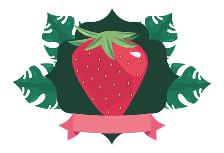 summer time holiday strawberry badge tropical leaves vector illustration