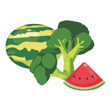broccoli watermelon fresh food vector illustration design