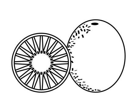 fresh kiwi with slice fruits healthy vector illustration design