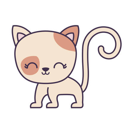 cute cat animal isolated icon vector illustration design Illustration