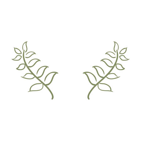 branches leaves nature on white background vector illustration