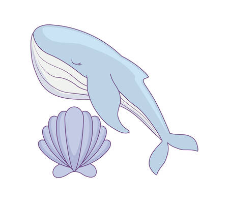 cute whale with seashell vector illustration design
