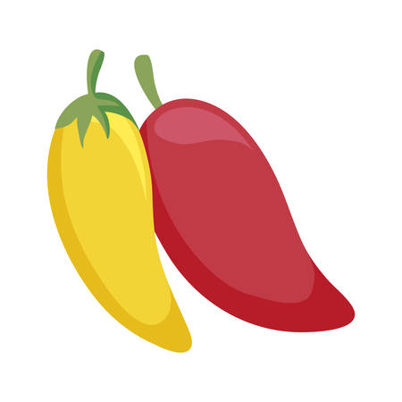 chili peppers mexican isolated icon vector illustration design