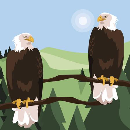 beautiful bald eagles in tree branch landscape scene vector illustration design Stock Illustratie