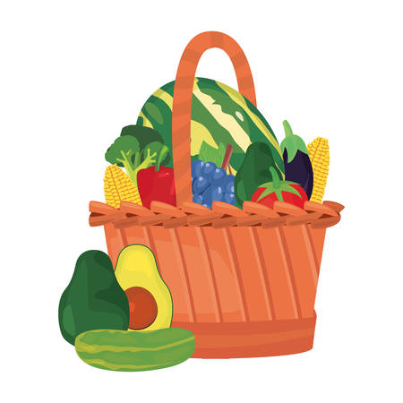 avocado watermelon broccoli cucumber eggplant corn fresh food wicker basket vector illustration