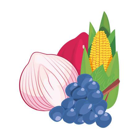 grapes garlic red onion fresh food vector illustration