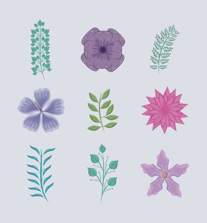 set of branches with leafs and flowers vector illustration design 向量圖像