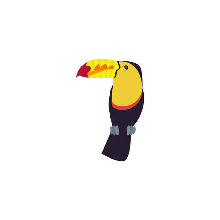 beautiful toucan on white background vector illustration design
