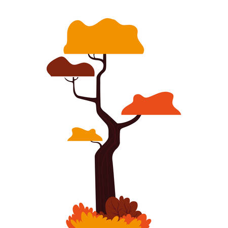 Autumn tree design, season nature ornament garden decoration and botany theme Vector illustration