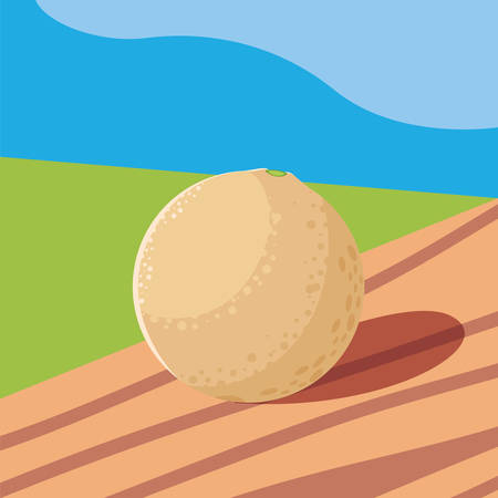 cantaloupe fresh in wooden table and landscape vector illustration design