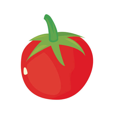 tomato fresh vegetables diet vector illustration design