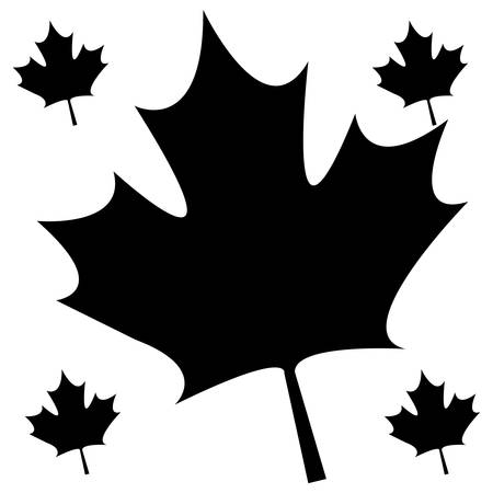 pattern of leafs maple canada vector illustration design