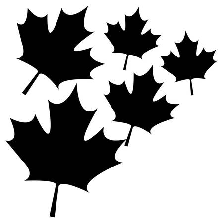 pattern of leafs maple canada vector illustration design Reklamní fotografie - 133978347