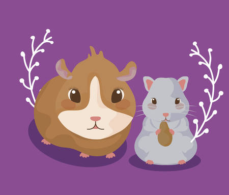 guinea pig with hamster baby animals vector illustration design