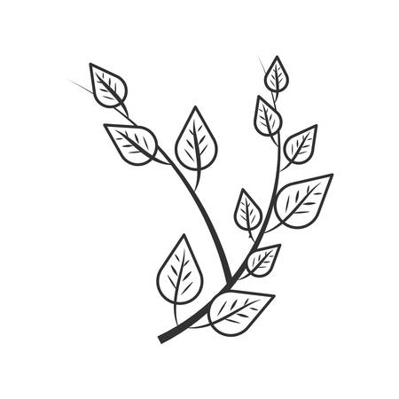 branches with leafs naturals vector illustration design Ilustracja