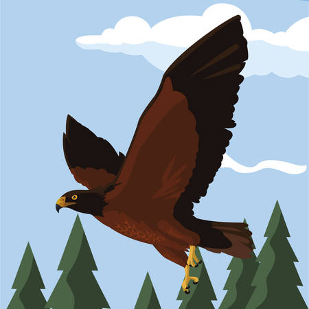 beautiful eagle flying in the landscape majestic bird vector illustration design