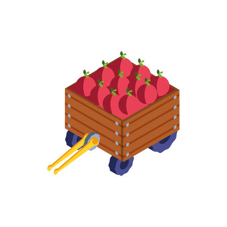 box wooden with vegetables on white background vector illustration design Foto de archivo - 134549204