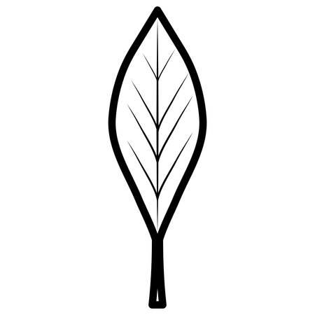 leaf icon over white background, vector illustration