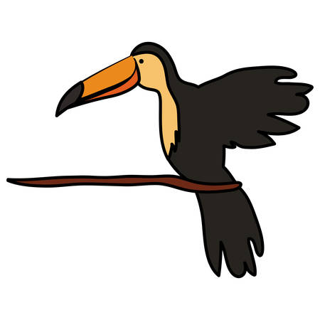 toucan exotic bird icon vector illustration design