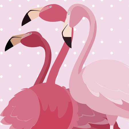 flock of elegant flamingos birds dotted background vector illustration design