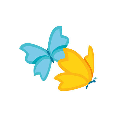 Butterfly design, insect animal wings nature summer beauty and spring theme Vector illustration