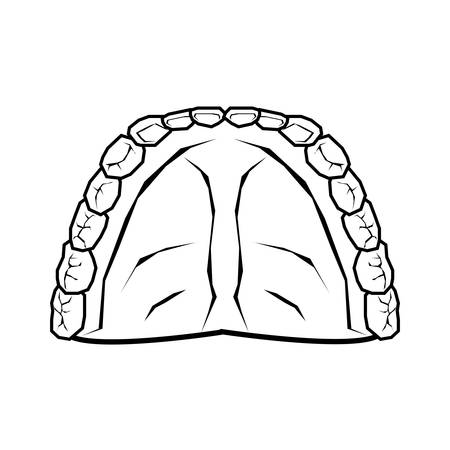 human teeth isolated icon vector illustration design