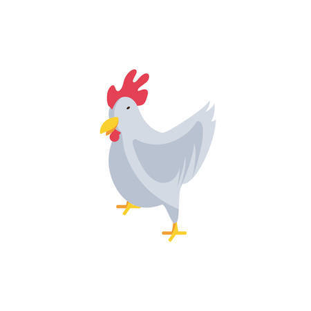 cute chicken on white background vector illustration design Foto de archivo - 135503023