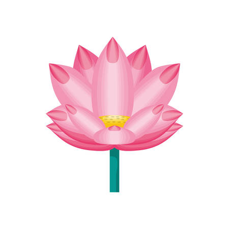 chinese flower natural icon vector illustration design