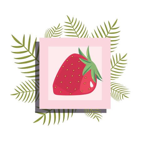 summer time banner branches foliage strawberry vector illustration