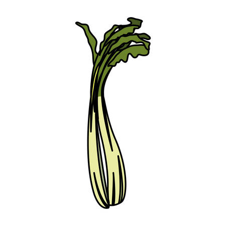 celery design, Vegetable organic food healthy fresh natural and market theme Vector illustration 向量圖像