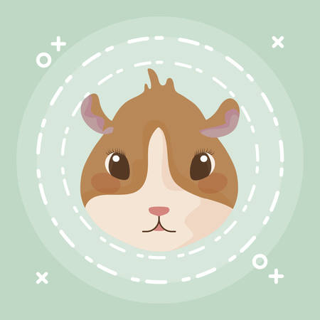 head of guinea pig baby animal vector illustration design Illustration