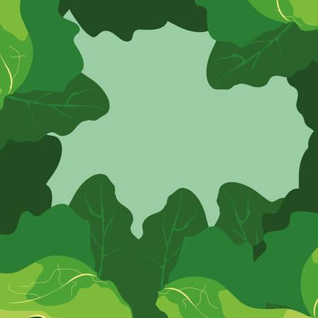 frame with leaves of celery vegetables vector illustration design