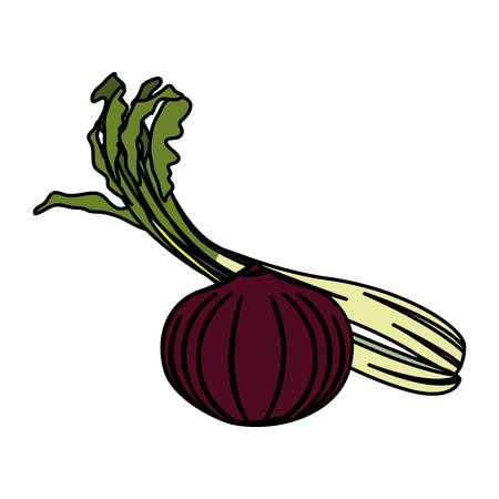 onion and celery design, Vegetable organic food healthy fresh natural and market theme Vector illustration