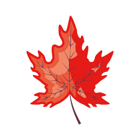 maple leafs autumn pattern background vector illustration design