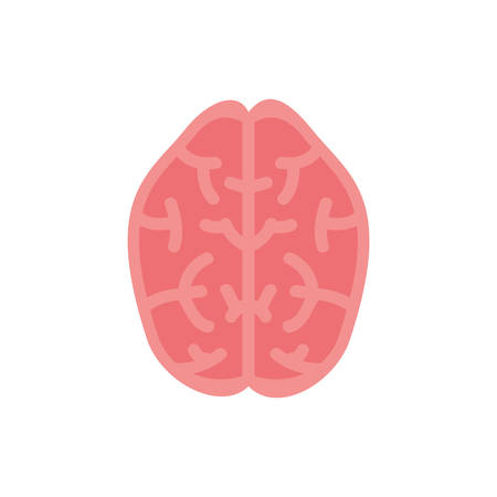 brain icon design, Human body person people health anatomy biology and science theme Vector illustration