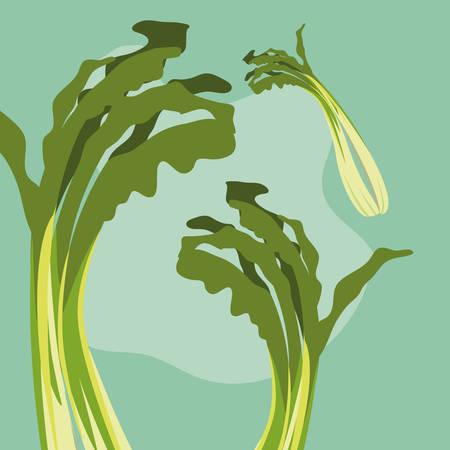 pattern of nature fresh celery vegetables vector illustration design