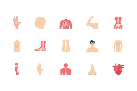 icon set design, Human body person people health anatomy biology and science theme Vector illustration Foto de archivo - 138184801